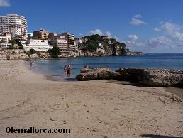 playa cala Mayor